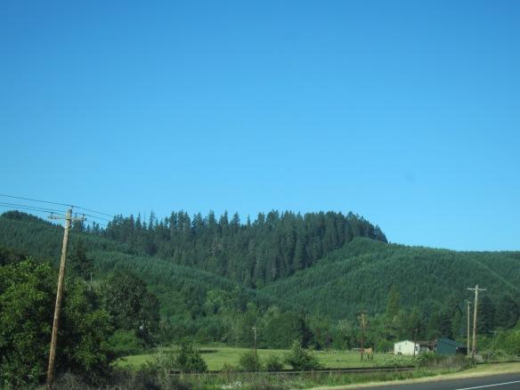 June 2013 West Coast Trip 024