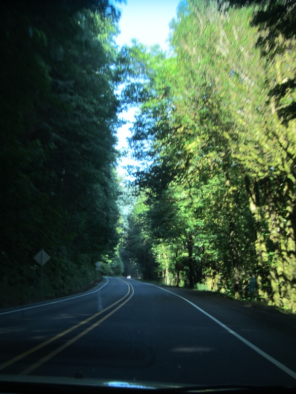 June 2013 West Coast Trip 029