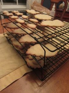 Beach Cookies 002