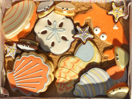 SDB-Shell-Clam-Bake-Cookie-Box1