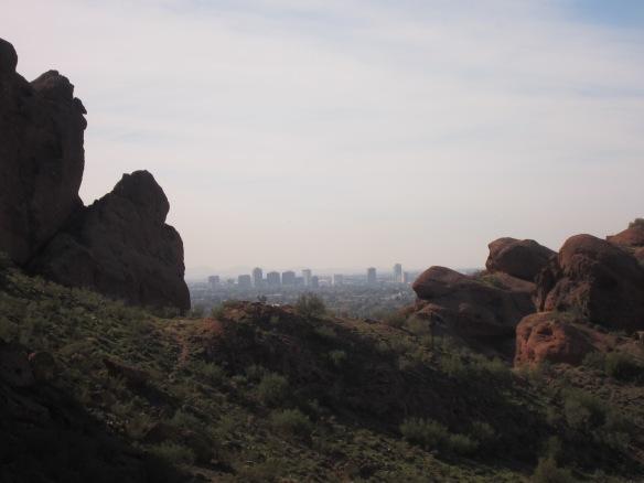 Phoenix 006