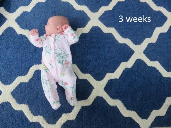 3 weeks
