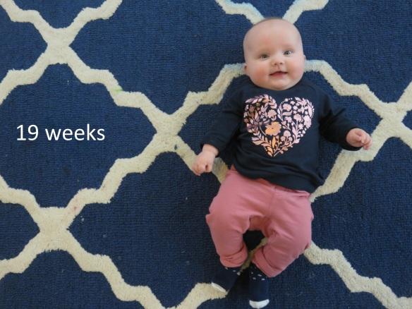 19 weeks