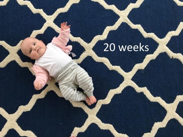 20 weeks
