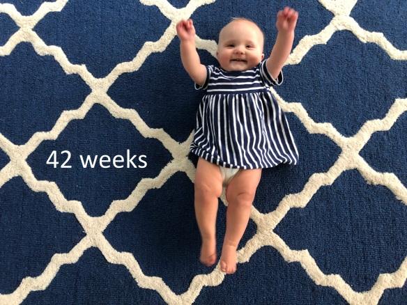 42 weeks