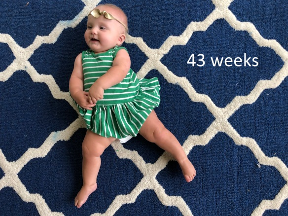 43 weeks