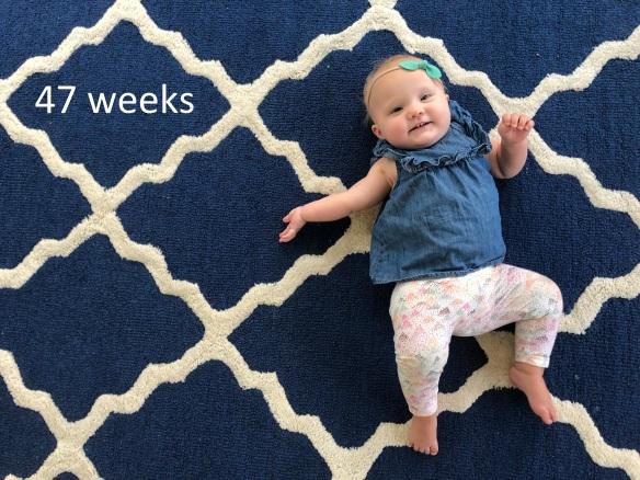 47 weeks