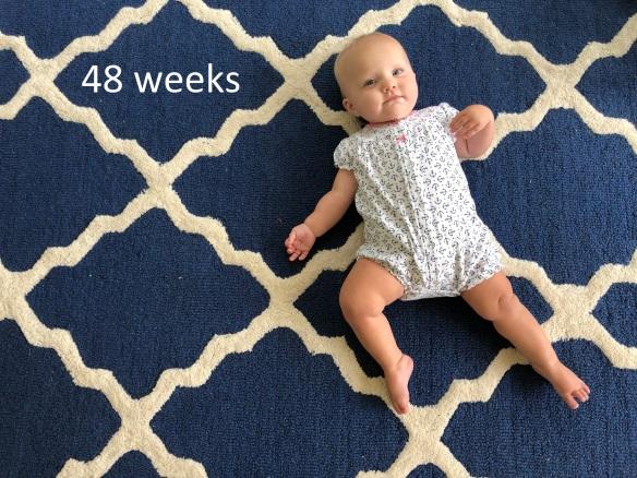 48 weeks.jpg