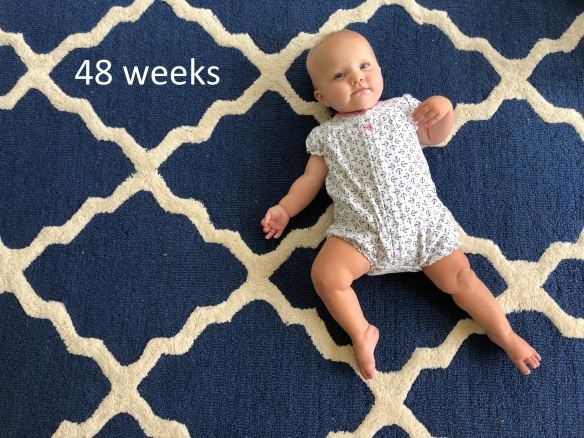 48 weeks